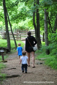 2 little boys and their aunt walking on a trail