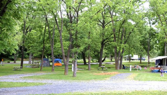 Camping at Walnut Hills